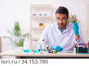 Купить «Young male chemist working in the lab», фото № 34153780, снято 17 марта 2020 г. (c) Elnur / Фотобанк Лори