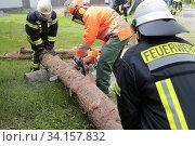 Купить «Feuerwehrübung, üben für den Notfall Durchschneiden eines Baumstamm», фото № 34157832, снято 14 июля 2020 г. (c) age Fotostock / Фотобанк Лори