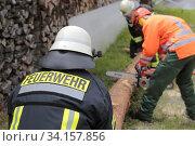 Купить «Feuerwehrübung, üben für den Notfall Durchschneiden eines Baumstamm», фото № 34157856, снято 14 июля 2020 г. (c) age Fotostock / Фотобанк Лори