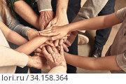 Viele Hände einer Familie gestapelt aufeinander als Netzwerk Konzept Header. Стоковое фото, фотограф Zoonar.com/Robert Kneschke / age Fotostock / Фотобанк Лори