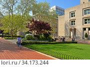 Spring in New York Columbia University (2019 год). Редакционное фото, фотограф Валерия Попова / Фотобанк Лори