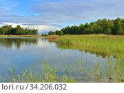 Summer landscape. Early morning by sea. Aland Islands, Finland (2014 год). Стоковое фото, фотограф Валерия Попова / Фотобанк Лори