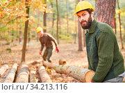 Arbeiter oder Holzfäller beim Transport von Langholz bei der Holzernte im Wald. Стоковое фото, фотограф Zoonar.com/Robert Kneschke / age Fotostock / Фотобанк Лори