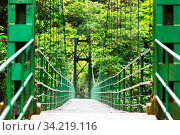 Handing Bridge in green jungle, Costa Rica, Central America. Стоковое фото, фотограф Zoonar.com/Galyna Andrushko / easy Fotostock / Фотобанк Лори