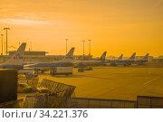 Сентябрьский рассвет на летном поле аэропорта Схипхол. Амстердам (2017 год). Редакционное фото, фотограф Виктор Карасев / Фотобанк Лори