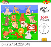 Cartoon Illustration of Educational Counting Activity Task for Children with Dogs Animal Characters. Стоковое фото, фотограф Zoonar.com/Igor Zakowski / easy Fotostock / Фотобанк Лори