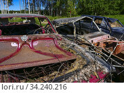 Boden, Sweden A car graveyard by the side of the road. Стоковое фото, фотограф A. Farnsworth / age Fotostock / Фотобанк Лори
