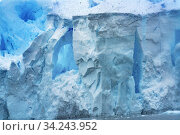 Snowing Blue Glacier Snow Mountains Paradise Bay Skintorp Cove Antarctica. Glacier ice blue because air squeezed out of snow. Стоковое фото, фотограф William Perry / easy Fotostock / Фотобанк Лори