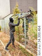 Fahrraddiebe heben Fahrrad über Zaun beim Stehlen. Стоковое фото, фотограф Zoonar.com/Robert Kneschke / age Fotostock / Фотобанк Лори