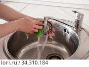 Women's hands wash the sink in the kitchen. Стоковое фото, фотограф Катерина Белякина / Фотобанк Лори