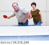 mature couple playing ping pong. Стоковое фото, фотограф Татьяна Яцевич / Фотобанк Лори