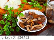 Assorted pickled mushrooms with parsley and sliced onions. Стоковое фото, фотограф Яков Филимонов / Фотобанк Лори