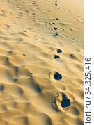 Купить «Footprints in dry sand», фото № 34325416, снято 26 февраля 2020 г. (c) Роман Сигаев / Фотобанк Лори