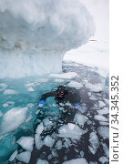 Photographer Franco Banfi beside iceberg before diving under ice.... Стоковое фото, фотограф Franco  Banfi / Nature Picture Library / Фотобанк Лори