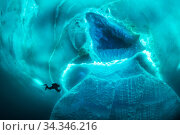 Diver exploring around an iceberg. Tasiilaq, East Greenland. April 2018. Стоковое фото, фотограф Franco  Banfi / Nature Picture Library / Фотобанк Лори