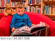 Cute little Caucasian boy sitting in a chair with his favorite soft... Стоковое фото, фотограф Zoonar.com/Pawel Opaska / easy Fotostock / Фотобанк Лори