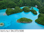 Aerial view of Milky Way Cove in Rock Islands. Palau, Pacific Ocean. Стоковое фото, фотограф Brandon Cole / Nature Picture Library / Фотобанк Лори