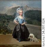 Maria Teresa de Borbon y Vallabriga, Francisco de Goya, 1783, National... Стоковое фото, фотограф Peter William Barritt / age Fotostock / Фотобанк Лори