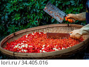 Chillies and garlic being chopped by female worker in a wicker bowl... Стоковое фото, фотограф Zoonar.com/Pawel Opaska / easy Fotostock / Фотобанк Лори