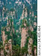 Stunning rock pillars of the tianzi mountain range, Avatar mountains... Стоковое фото, фотограф Zoonar.com/Pawel Opaska / easy Fotostock / Фотобанк Лори