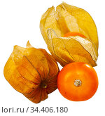 Physalis peruviana ripe fruits on white. Стоковое фото, фотограф Яков Филимонов / Фотобанк Лори