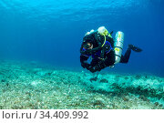 Rebreather diver coming up from a dive on the wreck Brioni, Vis Island, Croatia, Adriatic Sea. Редакционное фото, фотограф Franco Banfi / Nature Picture Library / Фотобанк Лори