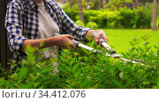 woman with pruner cutting branches at garden. Стоковое видео, видеограф Syda Productions / Фотобанк Лори