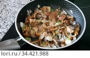 Close-up of delicious fried mushrooms with onion in a frying pan. Стоковое видео, видеограф Яков Филимонов / Фотобанк Лори