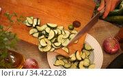 Image of female hands holding plate with vegetable salad, nobody. Стоковое видео, видеограф Яков Филимонов / Фотобанк Лори