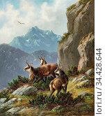 Muller Moritz - Chamois in an Alpine Landscape - German School - ... Редакционное фото, фотограф Artepics / age Fotostock / Фотобанк Лори