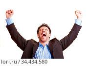 Jubelnder Manager ballt seine Fäuste und streckt sie nach oben. Стоковое фото, фотограф Zoonar.com/Robert Kneschke / age Fotostock / Фотобанк Лори