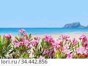 Beach of Moraira, spanish coastal town. Spain. Стоковое фото, фотограф Alexander Tihonovs / Фотобанк Лори