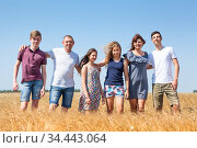 Parents with many minor children, long family portrait embracing together on ripe wheat field. Стоковое фото, фотограф Кекяляйнен Андрей / Фотобанк Лори
