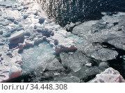 Льды. Стоковое фото, фотограф Leonid Shvarts / Фотобанк Лори