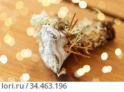 hydnellum fungus on wooden background. Стоковое фото, фотограф Syda Productions / Фотобанк Лори