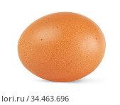 brown chicken egg isolated on white background. Стоковое фото, фотограф Александр Лычагин / Фотобанк Лори