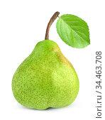 Pakham or Williams pear fruit isolated on white background. Стоковое фото, фотограф Александр Лычагин / Фотобанк Лори