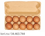 Chicken eggs in carton box. Стоковое фото, фотограф Александр Лычагин / Фотобанк Лори