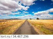 The vast expanse of farm fields in the Moolort Plains near the old... Стоковое фото, фотограф Zoonar.com/Chris Putnam / easy Fotostock / Фотобанк Лори