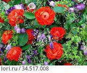 Blume, blumen, blumengesteck, blumengebinde, rose, rosen, bunt, natur... Стоковое фото, фотограф Zoonar.com/Volker Rauch / easy Fotostock / Фотобанк Лори