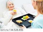 Alte Frau bekommt Frühstück ans Bett geliefert von ihrer Enkelin. Стоковое фото, фотограф Zoonar.com/Robert Kneschke / age Fotostock / Фотобанк Лори