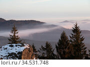 Nebel ueber Wald. Стоковое фото, фотограф Zoonar.com/Bosch Marcus / easy Fotostock / Фотобанк Лори