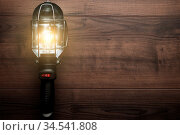 Hand lamp on the brown wooden background. Стоковое фото, фотограф Zoonar.com/Ruslan Ropat / age Fotostock / Фотобанк Лори