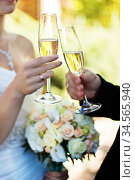 Bride and groom clinking glasses on wedding-day. Стоковое фото, фотограф Nataliia Zhekova / Фотобанк Лори