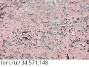 Pink paint coating with cracks on a dirty gray stone. Peeling pink... Стоковое фото, фотограф Zoonar.com/Ian Iankovskii / easy Fotostock / Фотобанк Лори