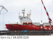 Cargo container ship nuclear-powered icebreaker Sevmorput Russian Corporation FSUE Rosatomflot. Container terminal commercial seaport (2019 год). Редакционное фото, фотограф А. А. Пирагис / Фотобанк Лори
