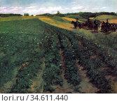 Trubner Wilhelm - Potato Farm in Wessling - German School - 19th ... Редакционное фото, фотограф Artepics / age Fotostock / Фотобанк Лори