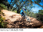 Mt Buller, Australia - December 30, 2015: Downhill mountain bike ... Стоковое фото, фотограф Zoonar.com/Chris Putnam / age Fotostock / Фотобанк Лори