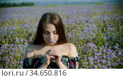 Romantic young woman with red lips standing on the lavender field and holding a flower. Стоковое видео, видеограф Константин Шишкин / Фотобанк Лори