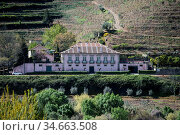 A winery in the Landscape of the Douro River at the town of Reso ... Стоковое фото, фотограф Zoonar.com/URS FLUEELER / age Fotostock / Фотобанк Лори